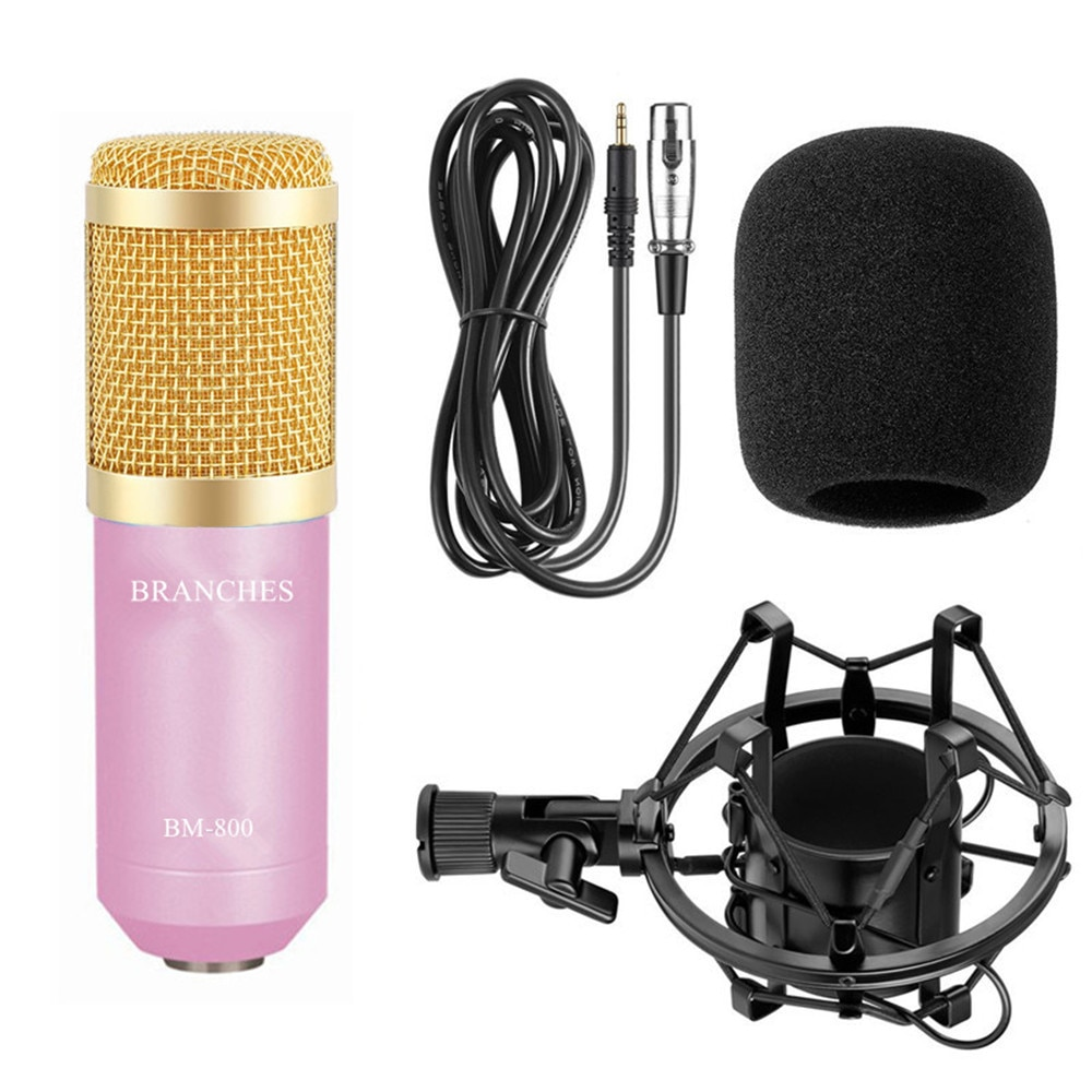 BM-800 Professional Condenser Microphone Kit For Computer